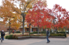 Students walking on-campus during the fall.